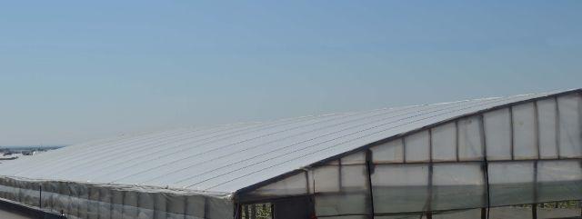 Solar acoperit cu folie profesionala
