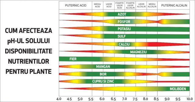 Disponibilitatea nutrientilor in functie de Ph-ul solului