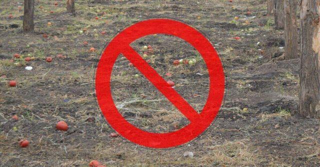 cauze ineficienta dezinfectie sol