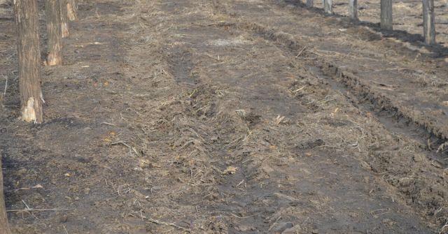 Curatare sol de resturi pentru dezinfectie