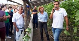 Aplicarea produselor de protectia plantelor