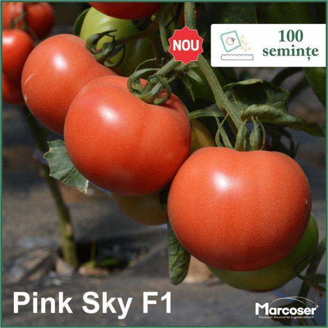 Pink Sky F1 la ambalaj de 100 de seminte