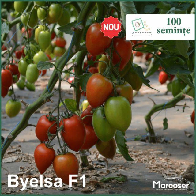 Byelsa F1 la ambalaj de 100 de seminte